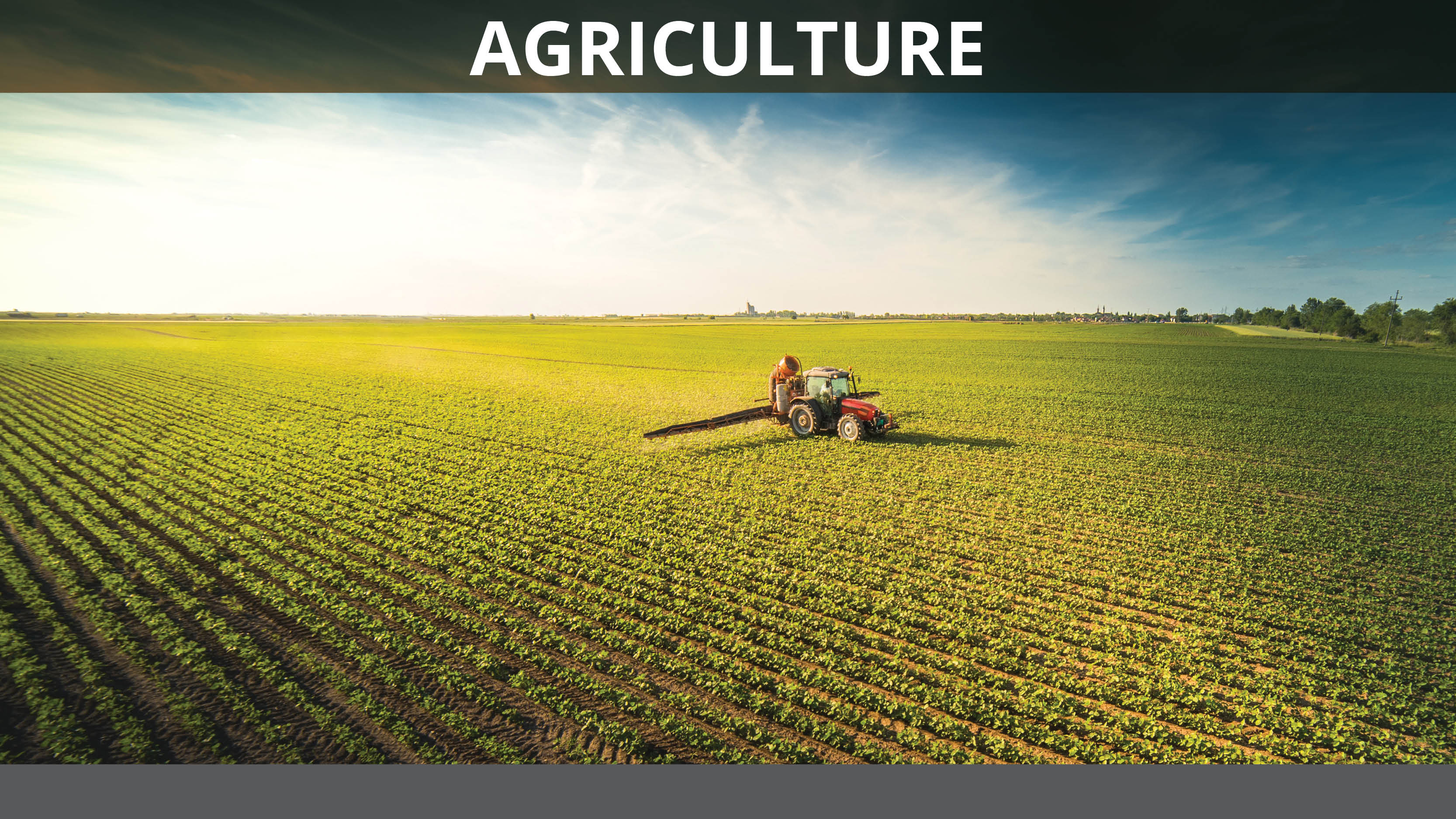 <h4>$166 BILLION</h4><h5>in proposed cuts over ten years</h5><p>CASE STUDY: The federal crop insurance program forces taxpayers to subsidize $8 billion in insurance premiums for large agribusinesses every year. </p><em>Photo credit: Fotokostic via Shutterstock</em>