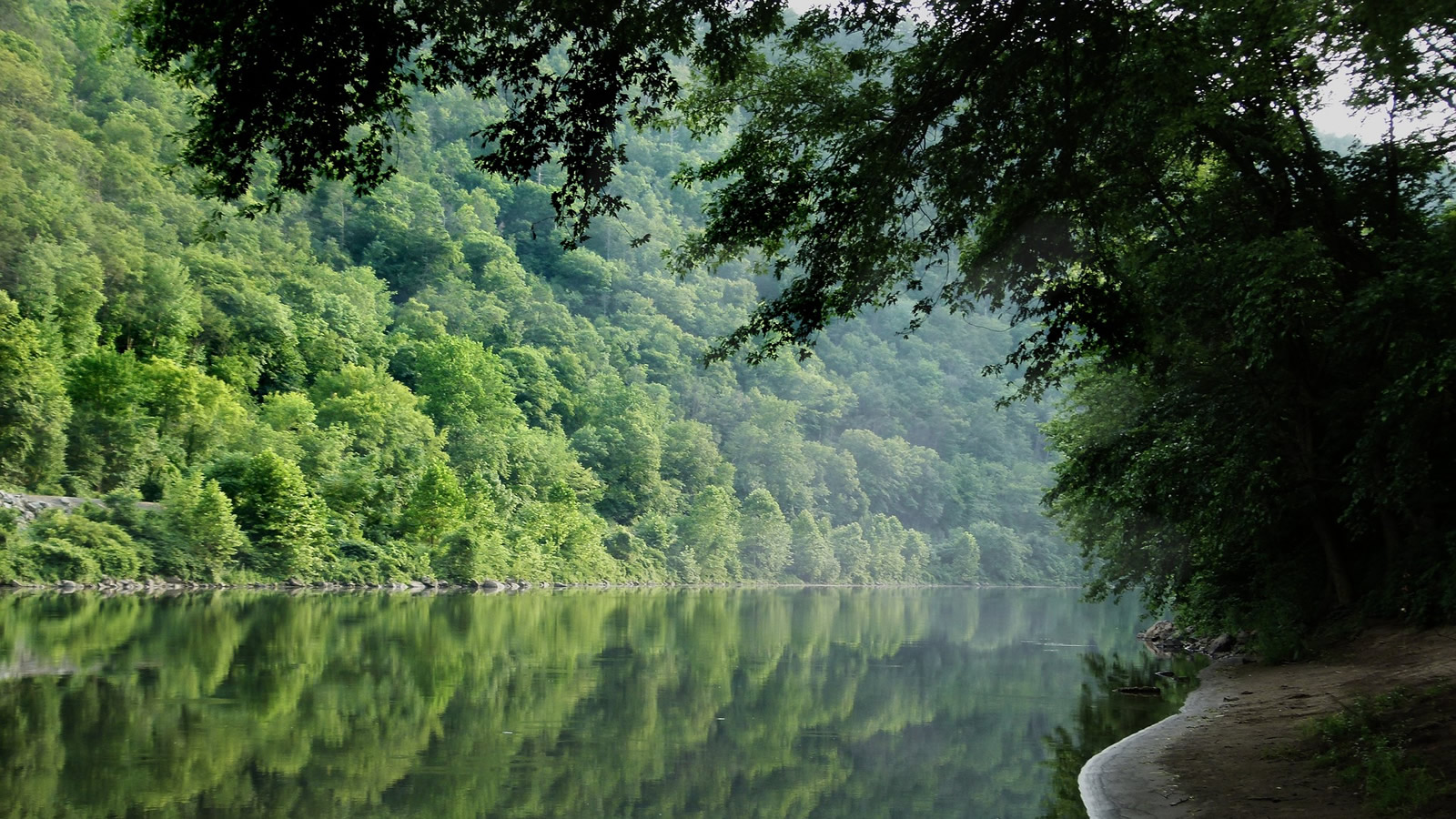 <h4>DELAWARE WATERSHED PROJECT</h4><h5>Goal: To better enable citizens, activists, officials and others to take positive action to improve the health of the Delaware River watershed.</h5>
